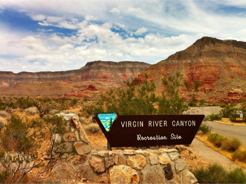 Az Camp Guide Virgin River Canyon Campground