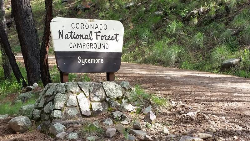 Az Camp Guide Sycamore Campground