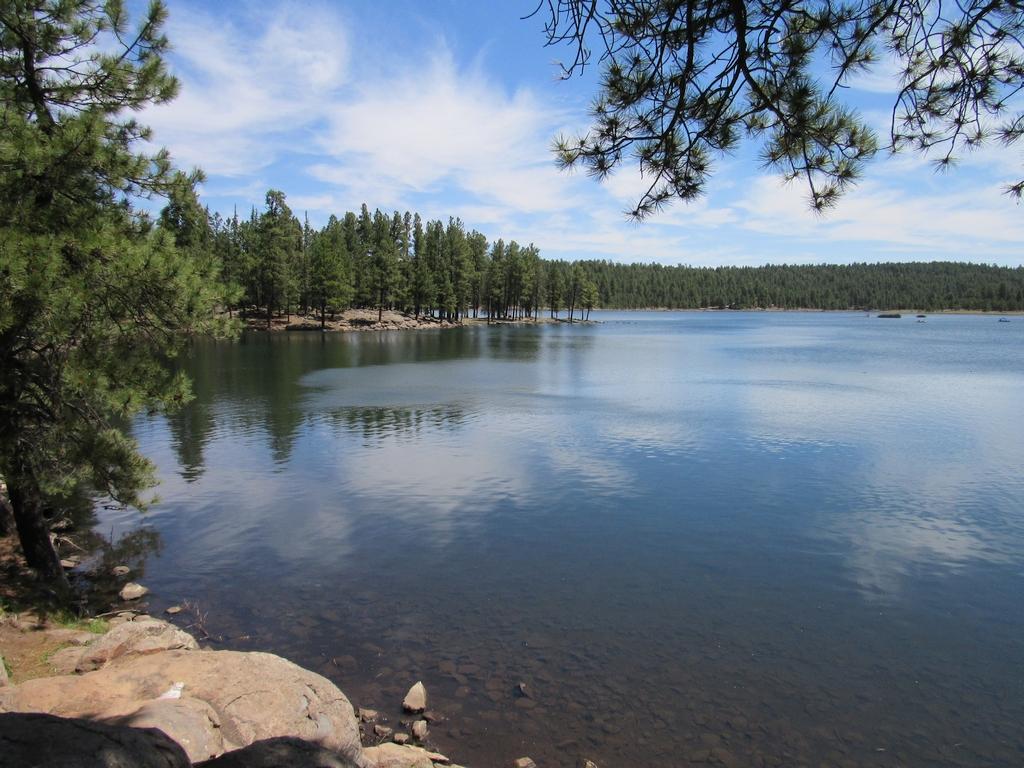 AZ Camp Guide   Hawley Lake Campground