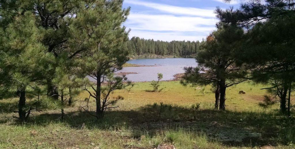 AZ Camp Guide | Shush Be Tou Lake Campground